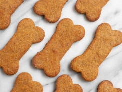 Why CBD Dog Treats Are More Beneficial Than other Types